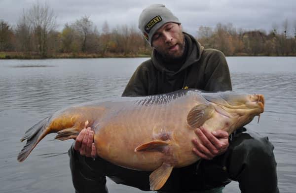 Nouveau record pour l'étang du Héron (Les étangs de l'Abbaye) : 37,950 kilos 4