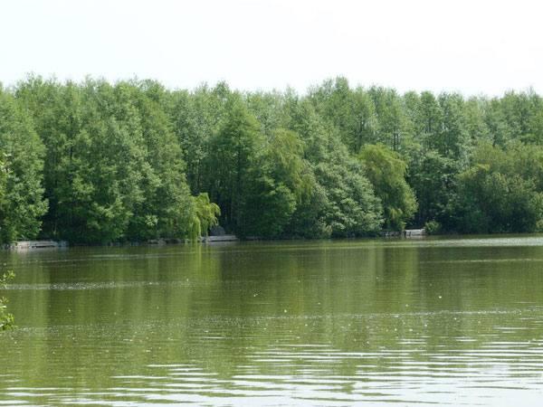 Berge du Lac Fishabil