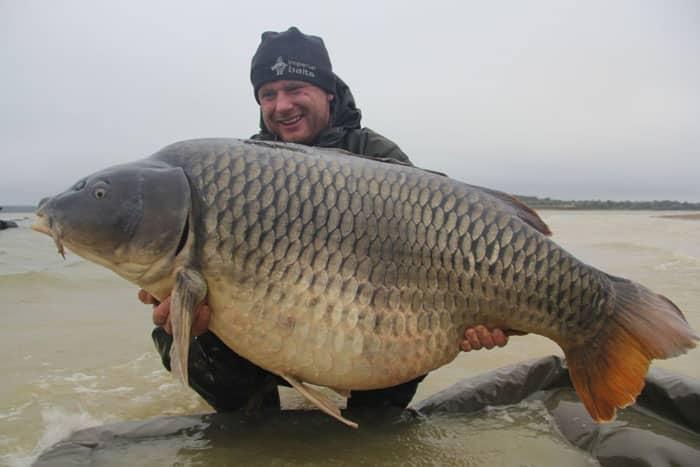 La commune star du lac du Der capturée à son poids record : 35,8kgs 1