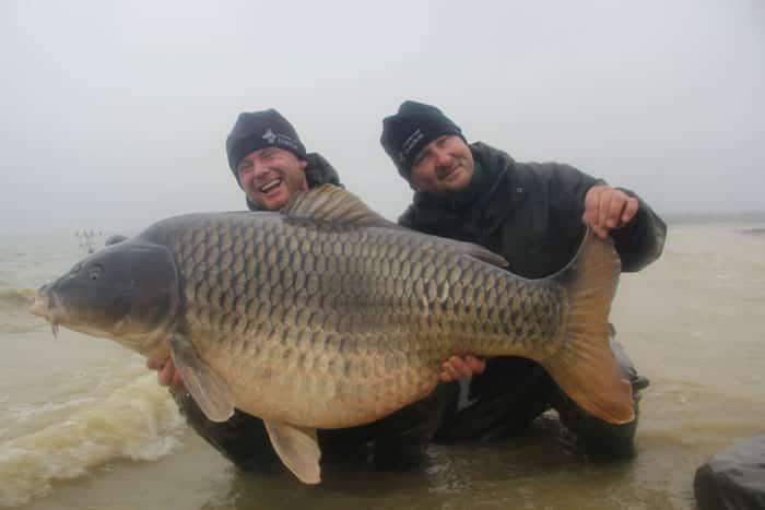 La commune star du lac du Der capturée à son poids record : 35,8kgs 7