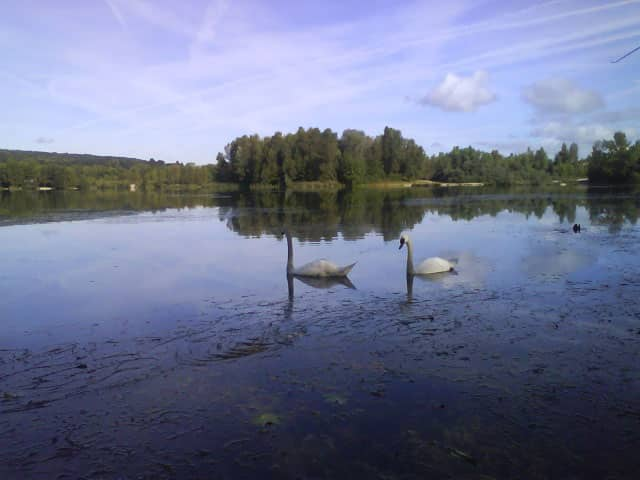 étang de Longeville