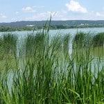 Lac-Balaton-2