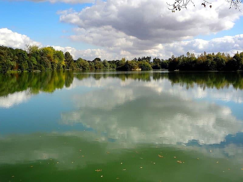 Etang Iles Cube - CarpaSens – Lac privé – Seine-et-Marne (77) 1