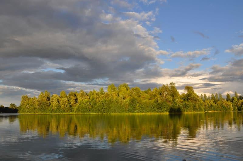 Etang Iles Cube - CarpaSens – Lac privé – Seine-et-Marne (77) 13