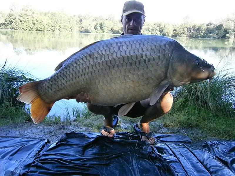 Etang Iles Cube - CarpaSens – Lac privé – Seine-et-Marne (77) 6
