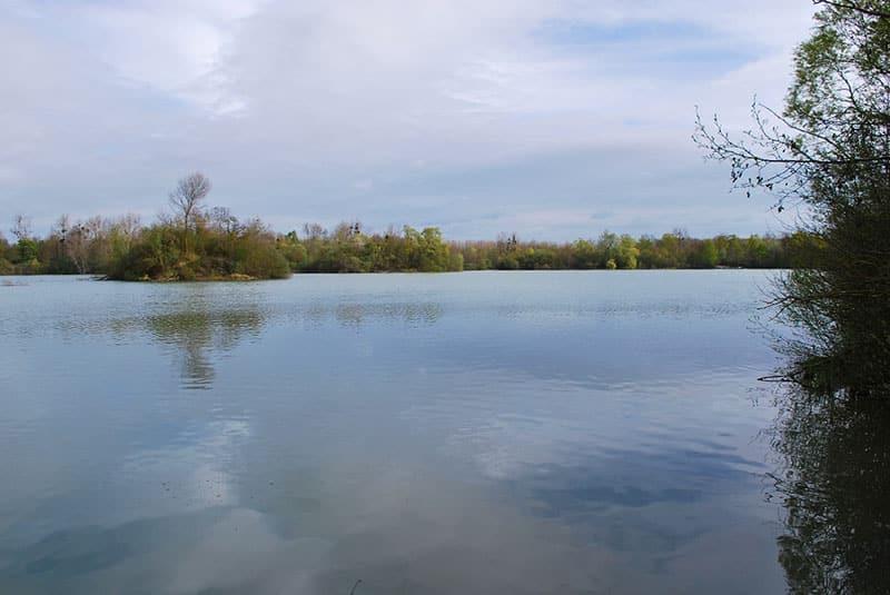 Etang Iles Cube - CarpaSens – Lac privé – Seine-et-Marne (77) 14