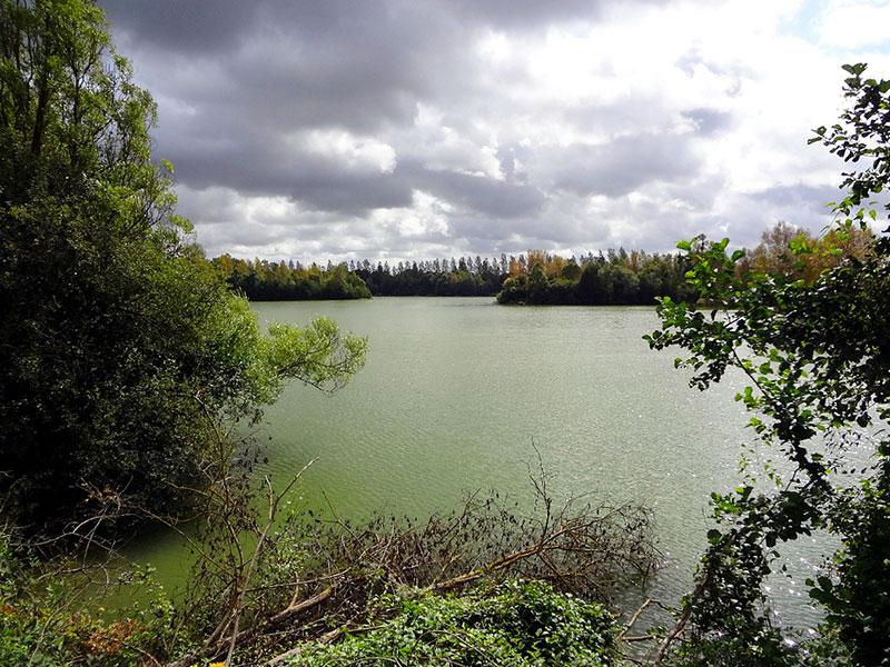Etang Iles Cube - CarpaSens – Lac privé – Seine-et-Marne (77) 11