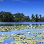 Lac-Chateau-Cavagnac-7