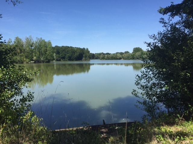 Vue d'une autre partie du grand bassin du lac du Grand Fontenay