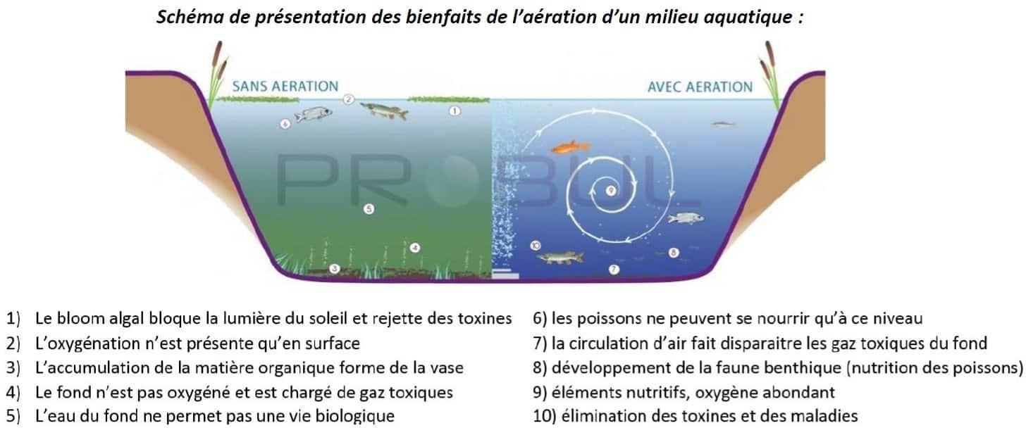 système d'aération dans un plan d'eau