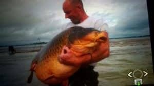 record-lac-der-44-kgs-2