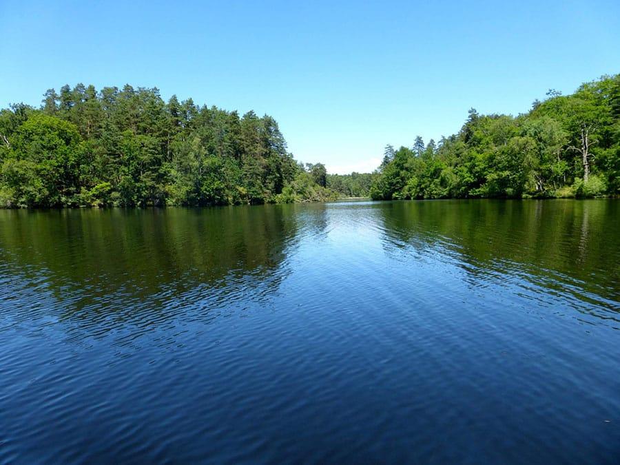 Les eaux de l'étang de Ruffaud