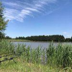 Domaine de la Rotière - Lac privé - Loir-et-Cher (41) 13