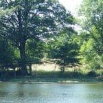 Etang des Chateliers – Lac privé – Deux-Sèvres (79) 4