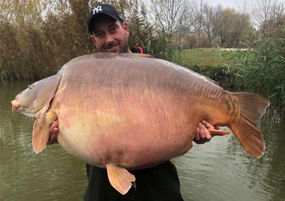 Carpe miroir 51,200 Kilos – Lac privé Euro Aqua – Michel Schoenmakers 12