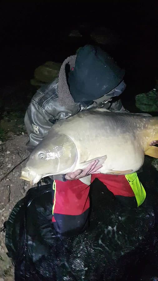 Carpe record au lac de Carcès : miroir de 31,2 kilos 2