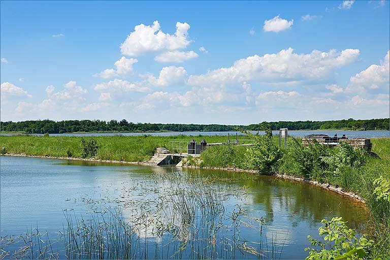 Etang de Gondrexange – Grand lac public – Moselle (57) 4