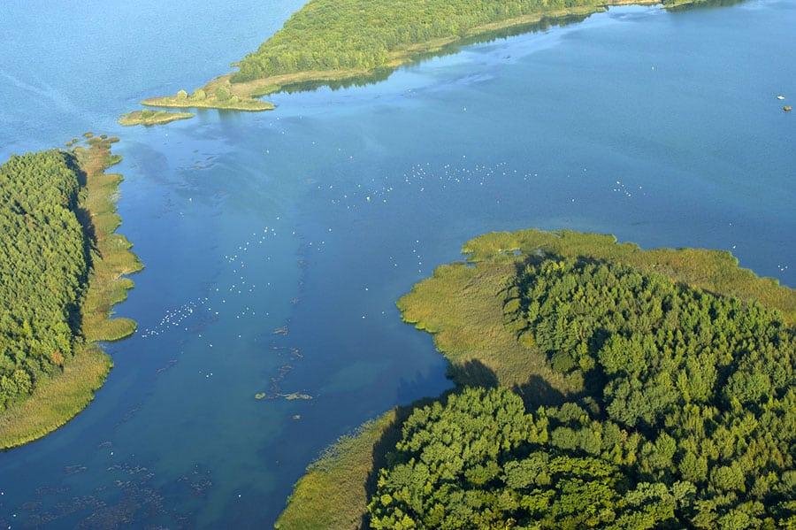 Lac de Madine - Grand lac public - La Meuse (55) 3