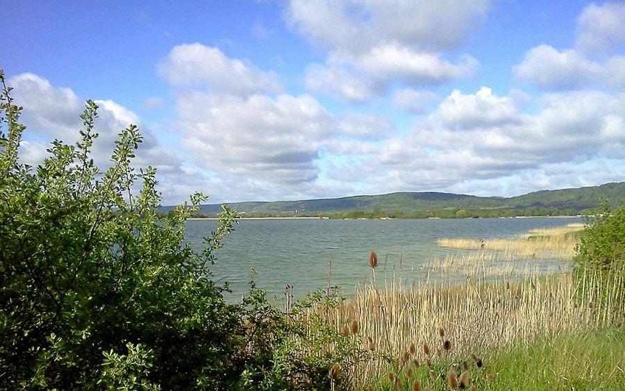 Lac de Madine - Grand lac public - La Meuse (55) 4