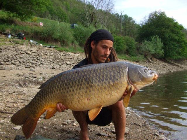 Lac de Sarrans – Grand lac public – Aveyron (12) 5