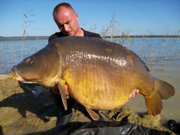 Lac de Madine - Grand lac public - La Meuse (55) 7