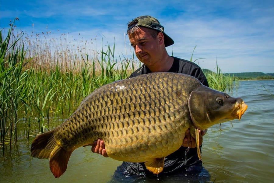 Lac de Madine - Grand lac public - La Meuse (55) 8