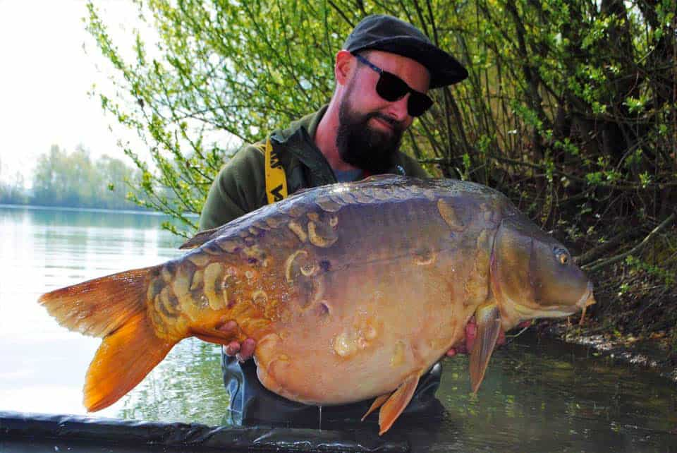 Etang le Prunet - CarpaSens - Lac privé - Yonne (89) 4