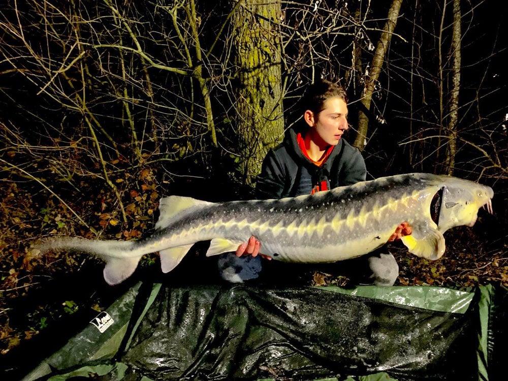 Lac du Grand Fontenay - Lac privé – Loiret (45) 5
