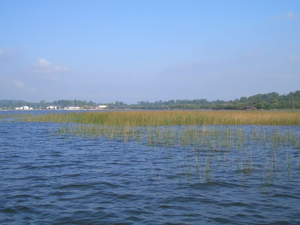 Lac de Biscarosse et de Parentis