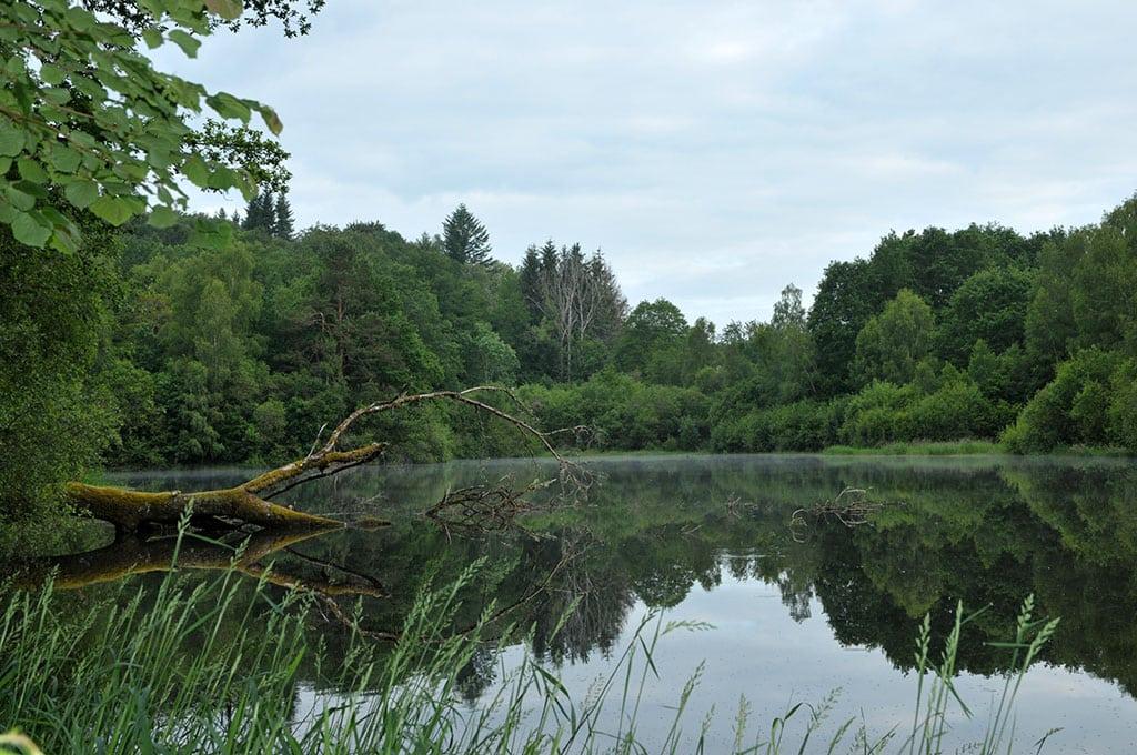 Berge sauvage du lac de Neuvic