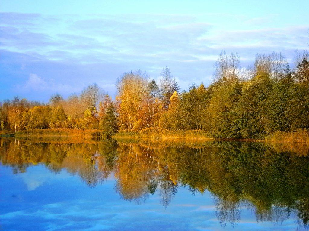 Berge d'un des étangs de l'Abbaye - Abbey lake
