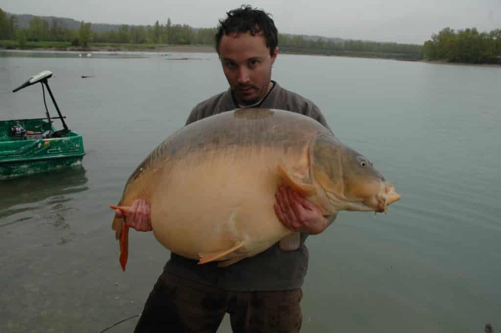 "Carpe miroir ""Nautilus"" 38,200 Kilos – Laurent Panelli 4"