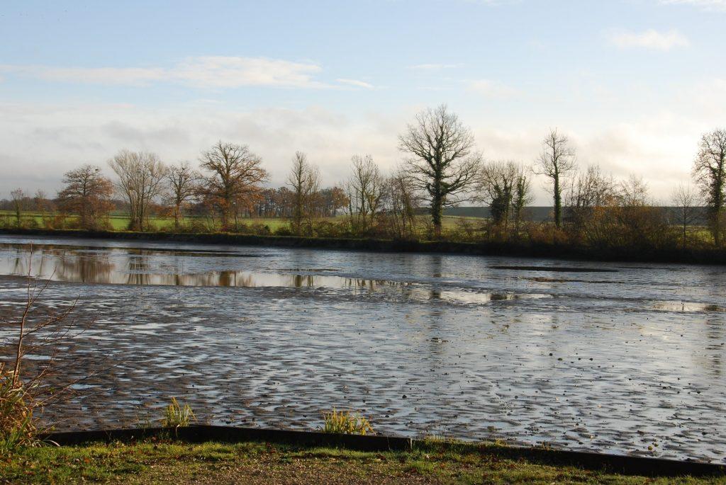 Jonchery – Lac privé – Aube (10) 6