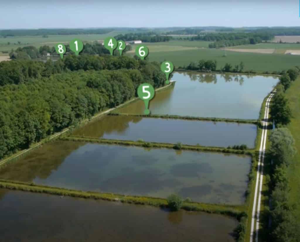 Les 7 postes pour le grand étang jonchery