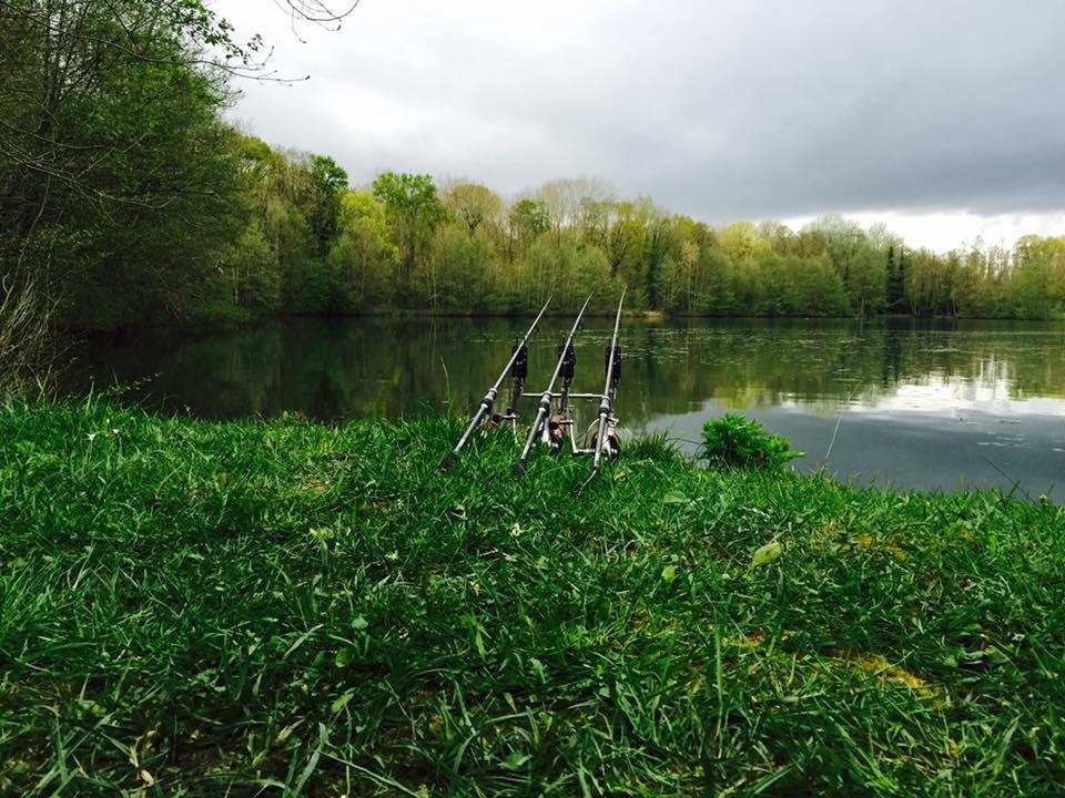 étang Carp Fishing des Pâtures