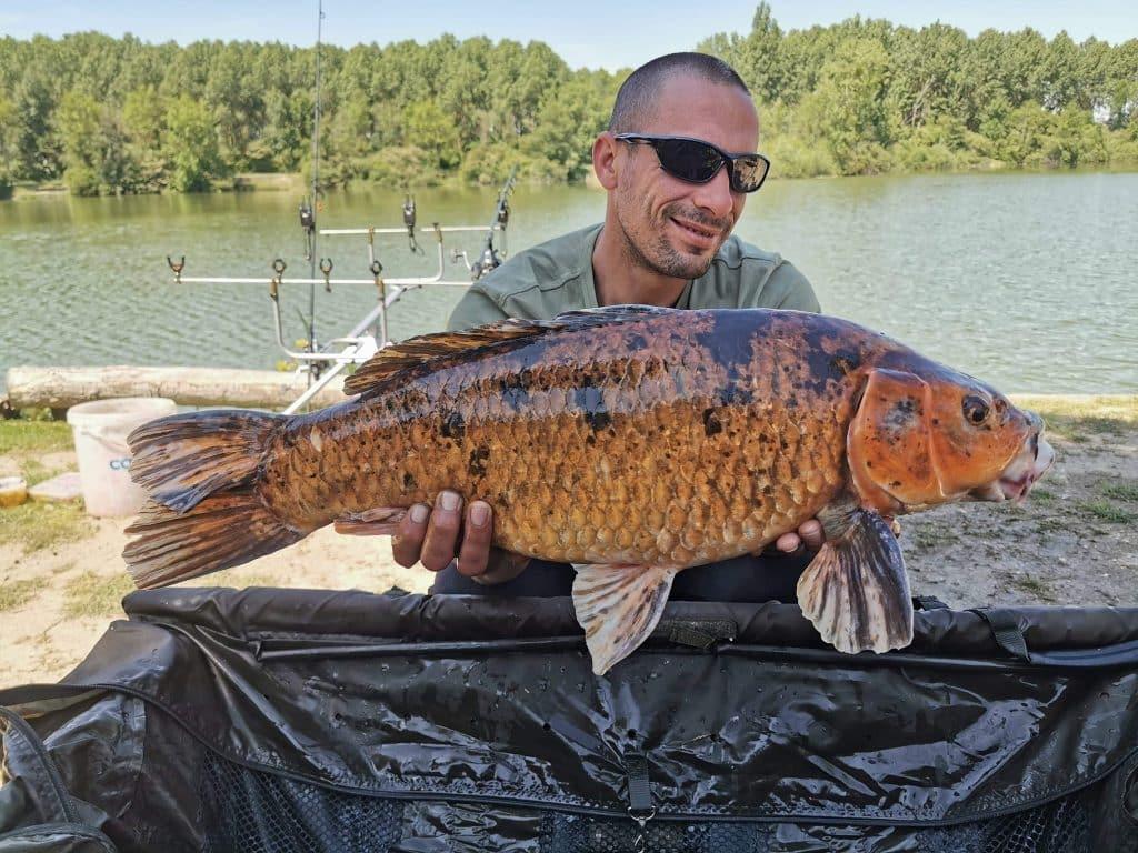 Les Sécherons – lac privé – Seine et Marne (77) 3