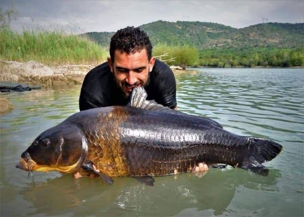 Lac de Saint Cassien - Grand lac public – Le Var (83) 2