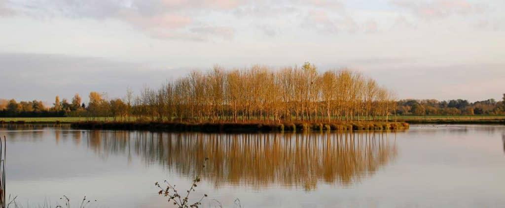 étang des Fourche