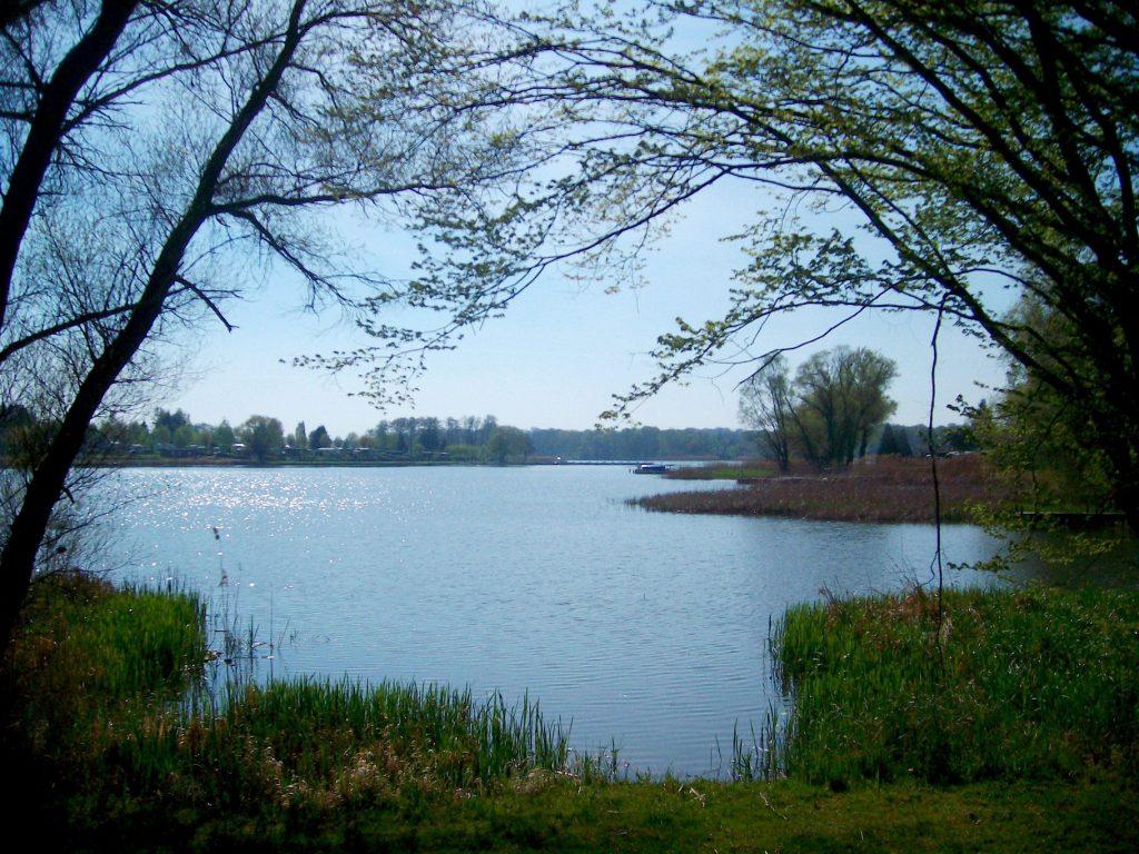 Lac du stock