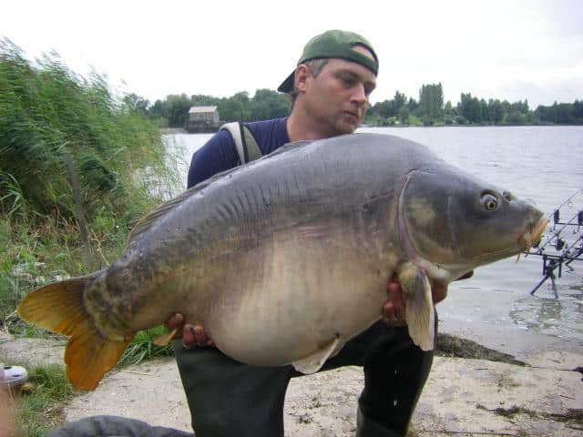 Etang du stock – Grand lac public – Moselle (57) 1