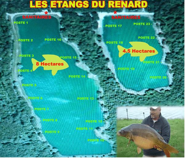 Postes étang du Renard