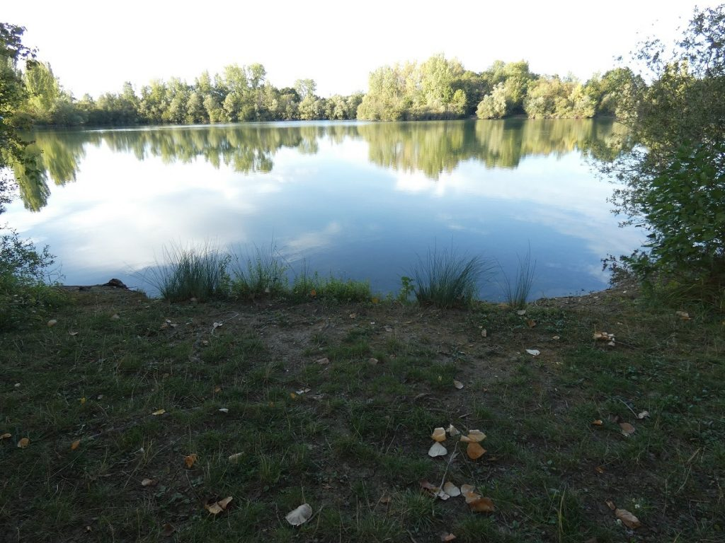 Poste 3 d'authentic fishing