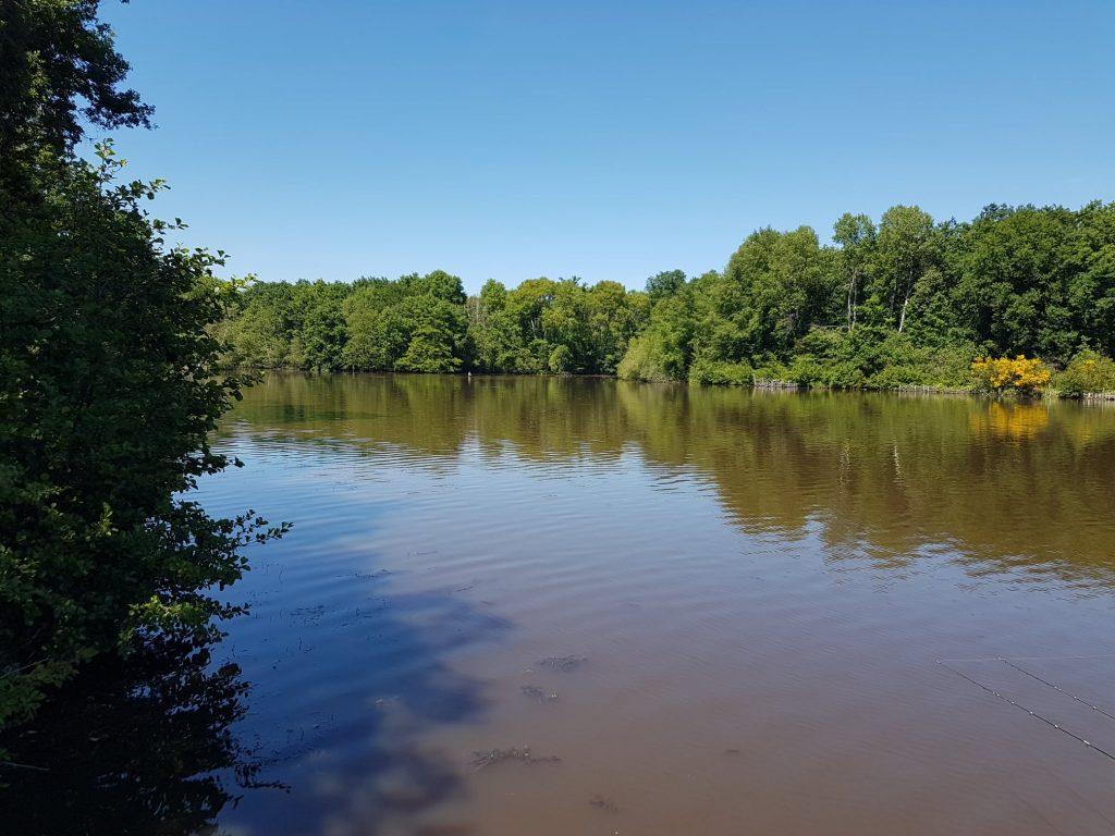Izy Carp Lake