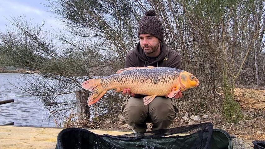 Izy Carp Lake – Lac privé – Loir-et-Cher (41) 3